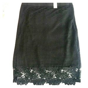 NWT The Limited Lace Pencil Skirt, SZ 10